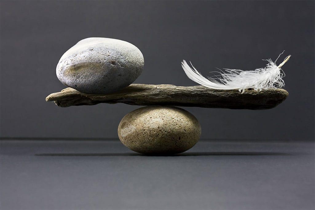 ZenQi France : méthode Feldenkrais, Tai Chi Yang Gym, Shiatsu-Seiki